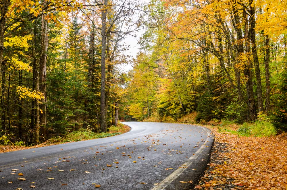 Tips To Prepare Your Home and Car for The Fall